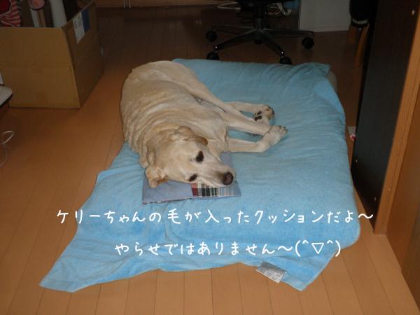 maru2_20121102233630.jpg