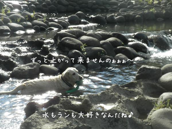 maru3_20120905204512.jpg