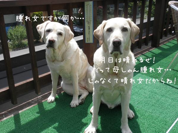 maru_20120620215716.jpg