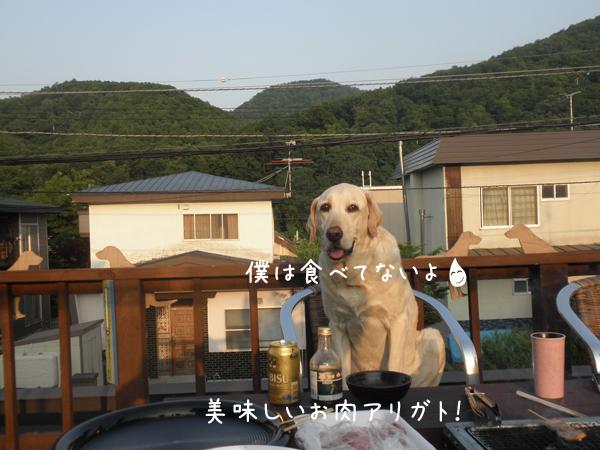 maru_20120629233324.jpg