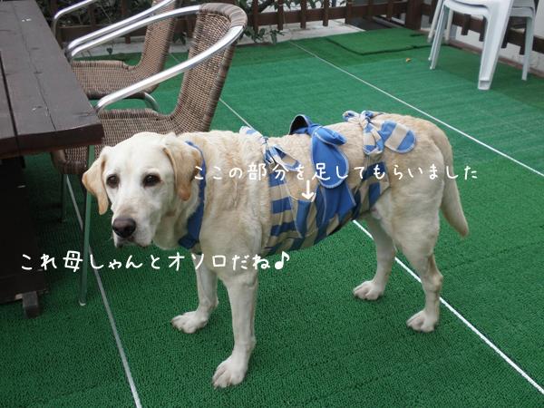 marubaru_20120726214657.jpg