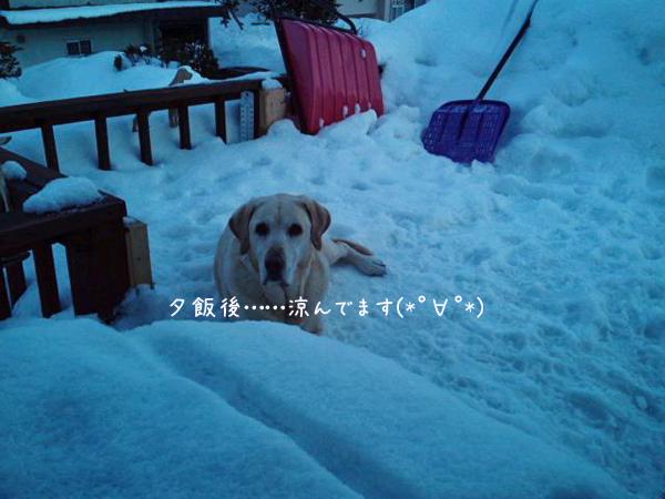 marubaru_20130306215011.jpg