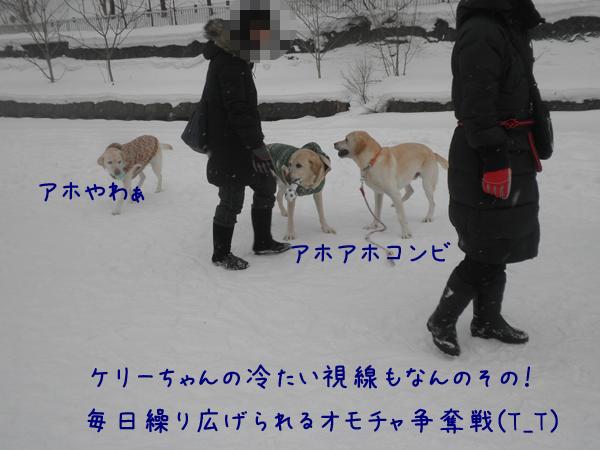 marudai_20130112200001.jpg