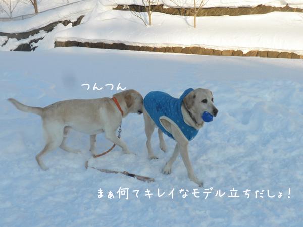 marudai_20130123214004.jpg