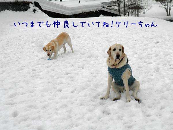 marukeri2_20130318212820.jpg