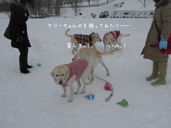marukeri_20121215214250.jpg