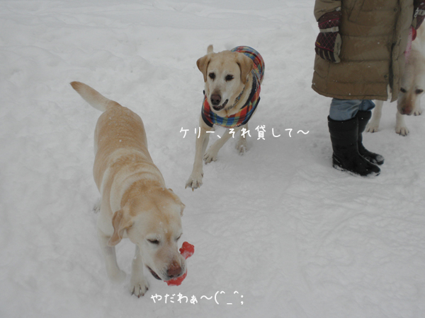 marukeri_20130218223019.jpg