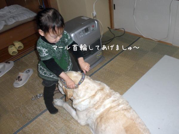 marukubiwa_20120516212945.jpg