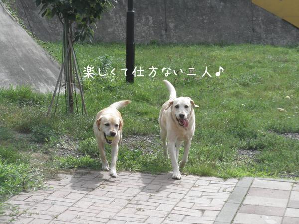 marulee2_20120818203636.jpg