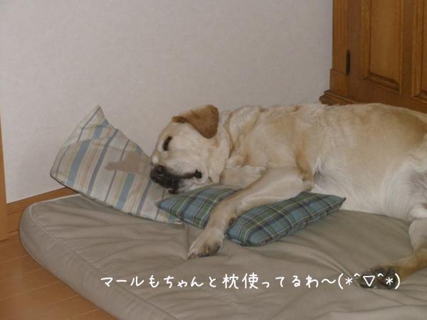 marumakura_20120605212542.jpg