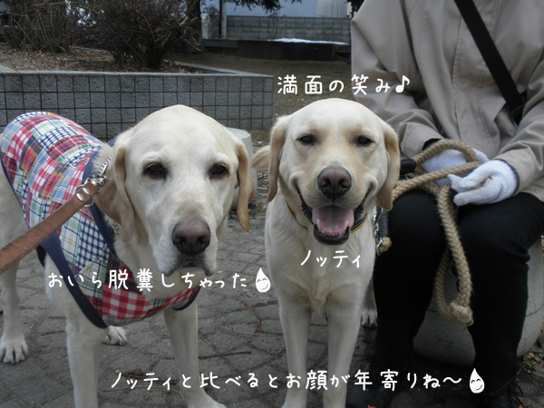 marunotei_20120419221106.jpg