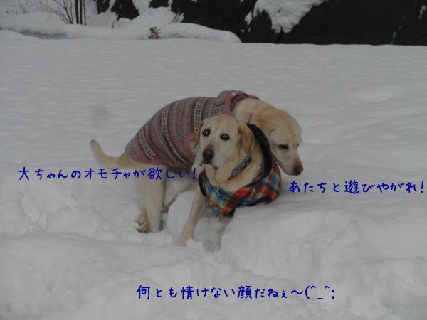 marusyeri_20121216212104.jpg