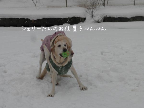 marusyeri_20130104192331.jpg