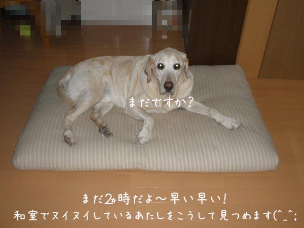 maruwasitu_20130127193604.jpg