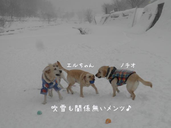 minna2_20130127194526.jpg
