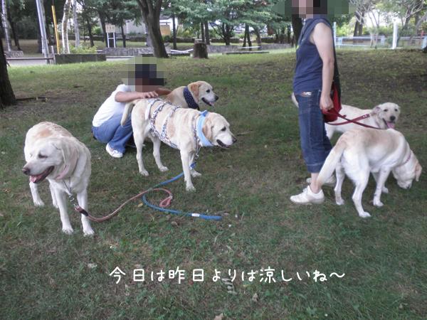 minna_20120729213449.jpg