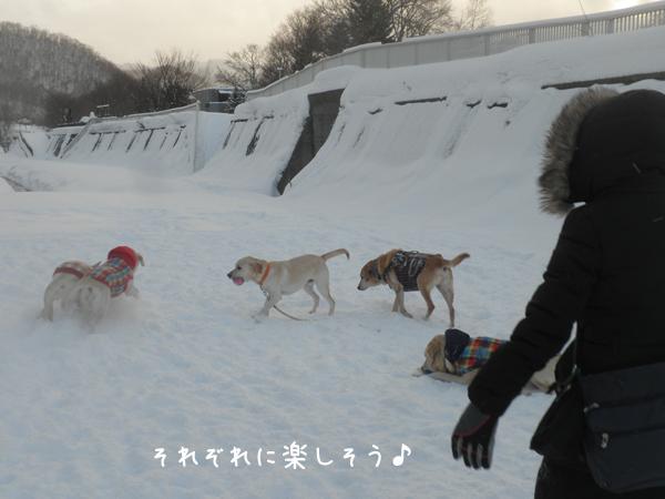 minna_20130115192044.jpg