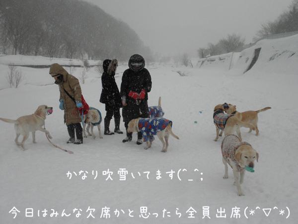 minna_20130127194522.jpg