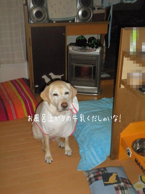 miruku_20130313213837.jpg