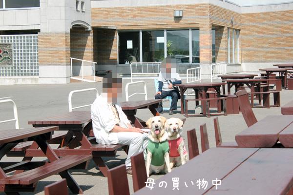 nakayama2_20120615121112.jpg
