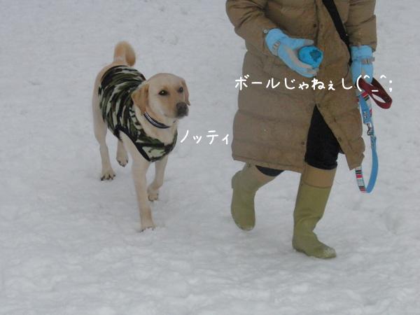 notei_20121230224353.jpg
