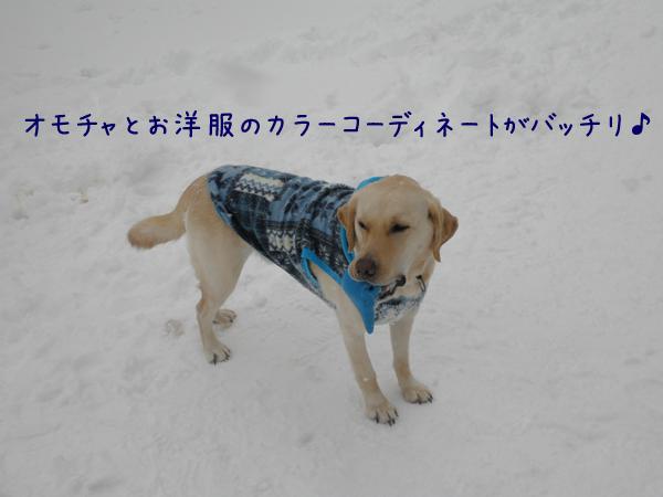 notei_20130212213900.jpg