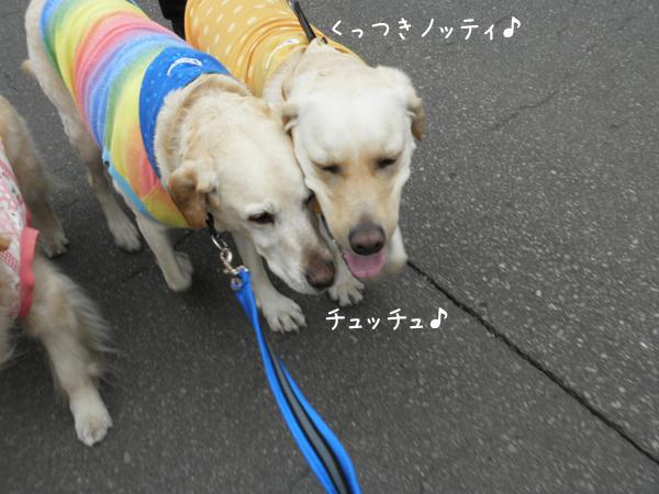 noteimaru_20120423221106.jpg
