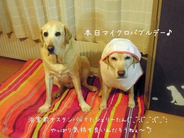ohuro_20130227201635.jpg