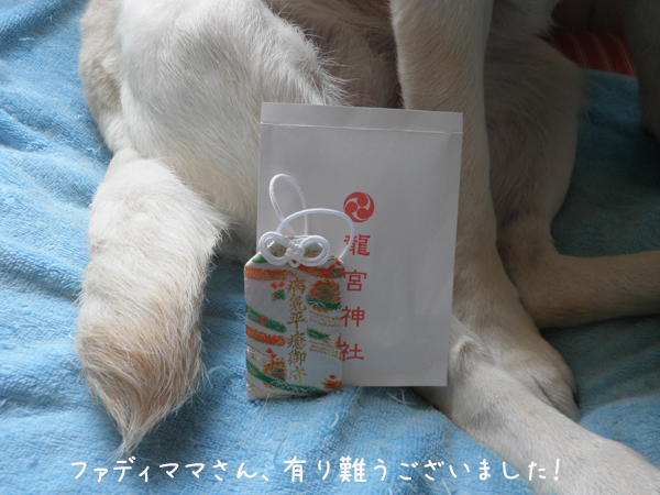 omamori2_20120719094202.jpg