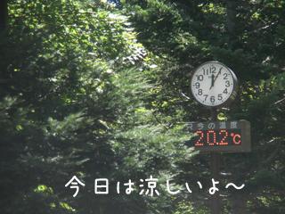 ondo_20120807185404.jpg