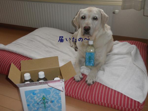 onsen1_20121127194254.jpg