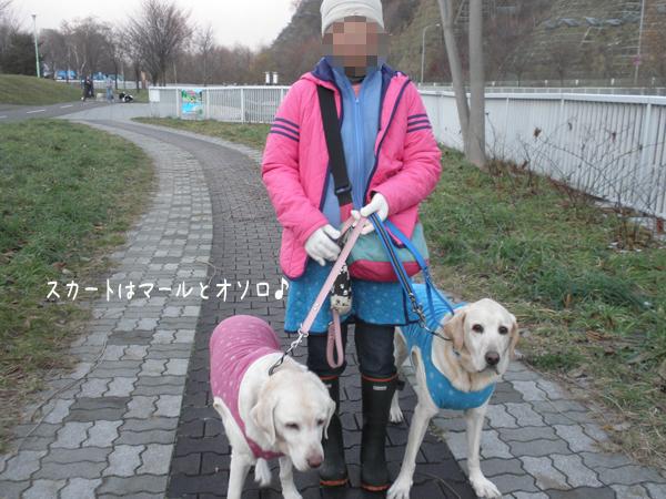 osoro_20121121215818.jpg