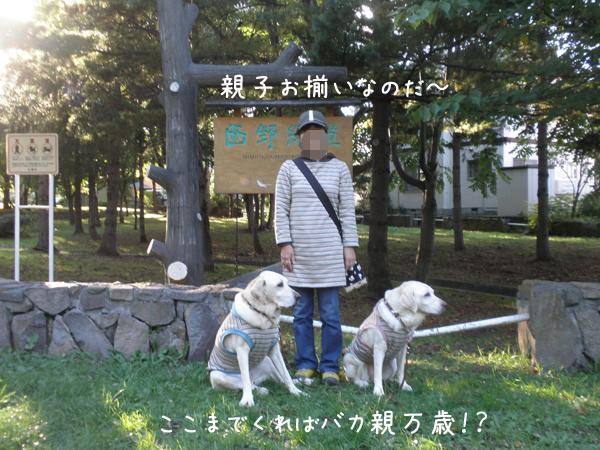 oyako11.jpg