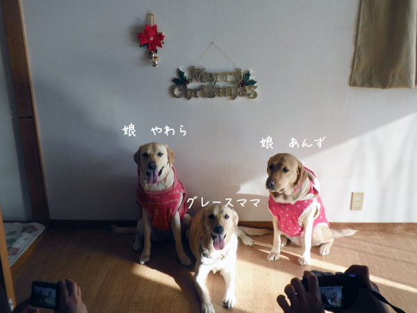 oyako1_20121219221337.jpg