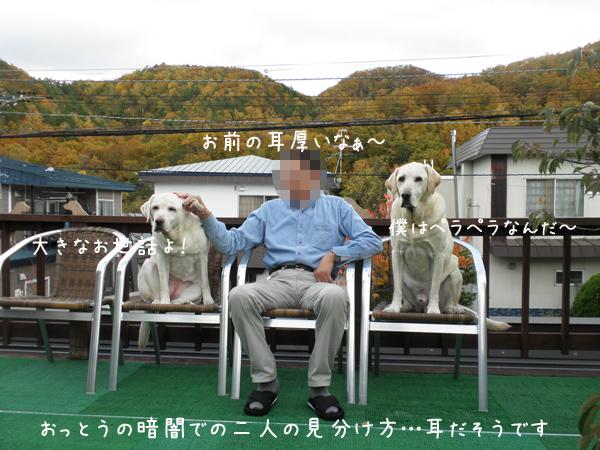 oyako2_20121029220234.jpg