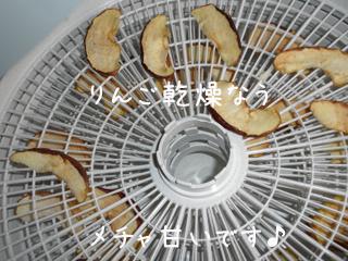 ringo_20121023232828.jpg