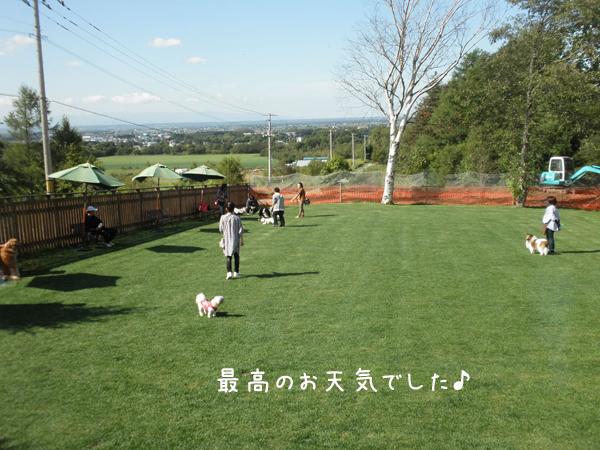 run1_20121004210018.jpg