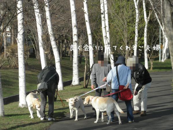 ryokudou1_20120425230959.jpg