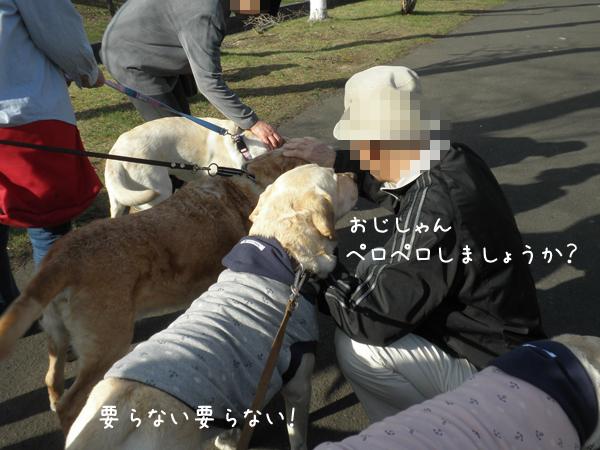 ryokudou2_20120425230959.jpg
