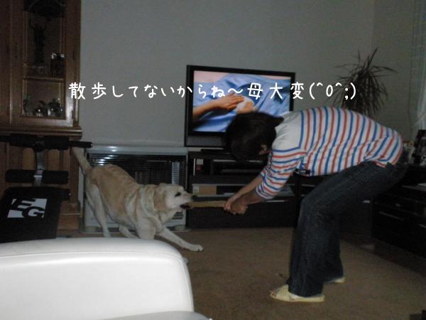 s1_20120620215717.jpg