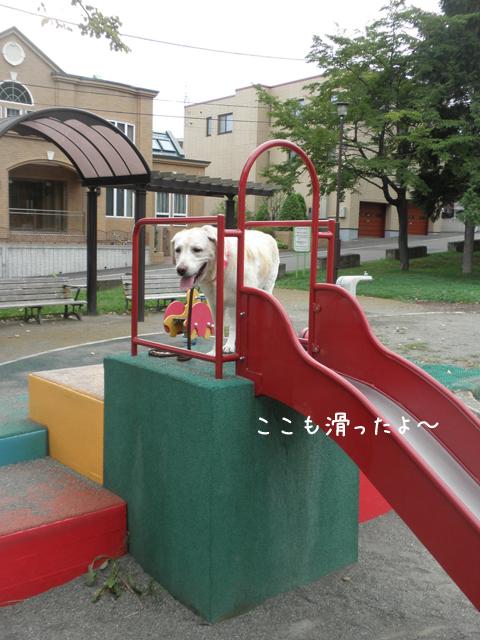 s2_20120921203003.jpg