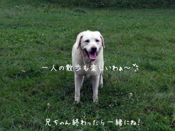 s3_20120921203003.jpg