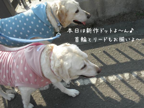 sanpo1_20120421231920.jpg