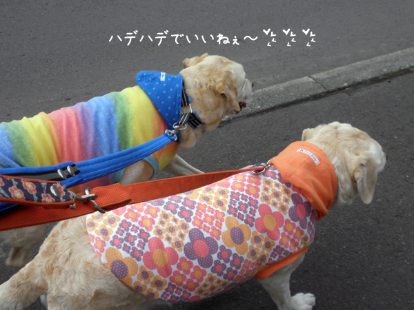 sanpo1_20120423215942.jpg