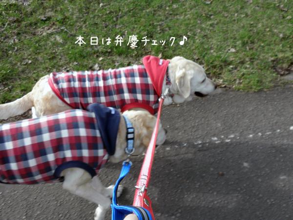 sanpo1_20120424214847.jpg