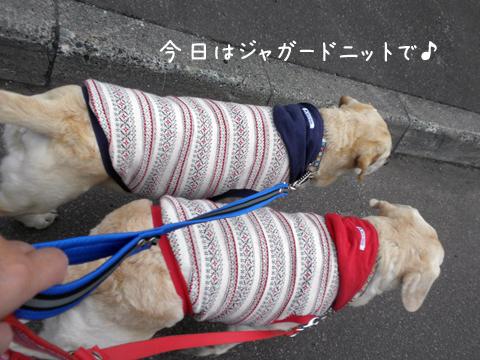 sanpo1_20120429224604.jpg