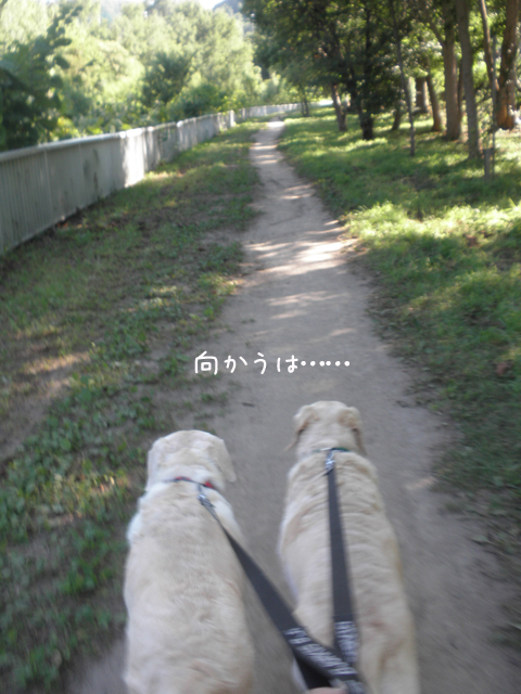 sanpo1_20120809212918.jpg