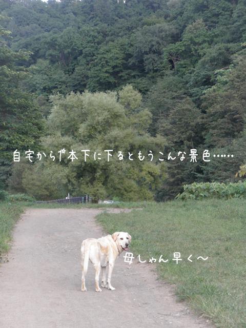 sanpo1_20120907204716.jpg