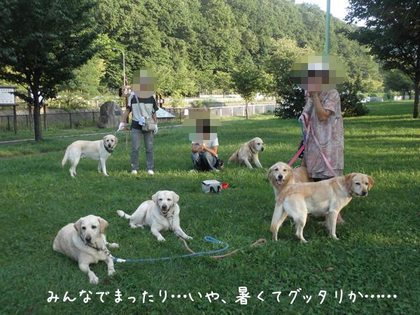 sanpo1_20120914222501.jpg