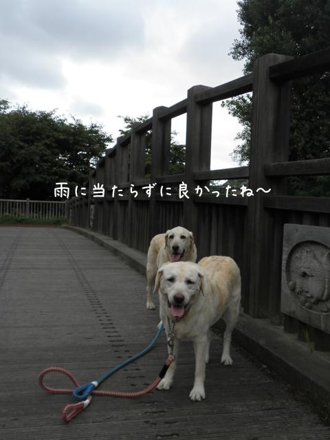 sanpo1_20120917204440.jpg